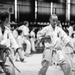 Міжнародний семінар з Шидокан карате в Ужгороді